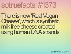 There is now 'Real Vegan Cheese', which is synthetic milk free cheese created using human DNA strands.