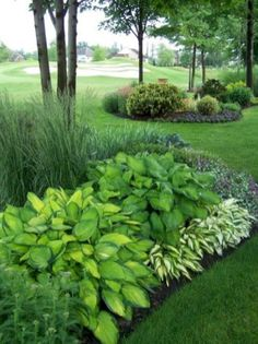 Fresh and beautiful backyard landscaping ideas 42