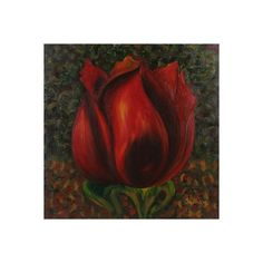 NOVICA Original Indian Oil Painting Red Rose Still-Life ($178) ❤ liked on Polyvore featuring home, home decor, wall art, paintings, realist paintings, red, novica paintings, flower wall art, rose paintings and indian oil painting
