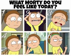 The 6th Morty sums it up