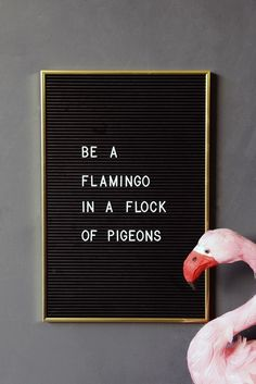 Use a POP of colour in your accessories to STAND OUT from the crowd! Be a flamingo in a flock of pigeons!