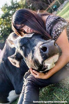 Y si en vez de comerlos les damos un poquito de amor?   Los animales que en todo el mundo se explotan y asesinan para consumo humano son seres muy sensibles y con un gran corazón. Así nos lo demuestran cada día todos los rescatados que viven en el santuario quienes luego de recuperarse emocionalmente se convierten en animales muy sociables confiados y cariñosos.  Tenemos mucho que aprender aún sobre los demás animales. Aprender  por ejemplo que los animales considerados de granja son tan…