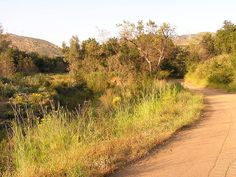 Black Star Canyon in the Santa Ana Mountains was the site of an Indian massacre in 1831 and has numerous haunting stories surrounding it.