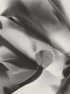 P 38 | Photogramm, 2016 | Silbergelantine Print (PE) auf Bristolkarton Bristol, Ballet Shoes, David, Wedding Rings, Engagement Rings, Artwork, Prints, Abstract, Ballet Flats