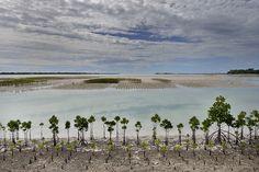 Climate change / sea-level rise in Kiribati Wake Island, Federated States Of Micronesia, Norfolk Island, Sea Level Rise, Easter Island, Northern Mariana Islands, Solomon Islands, Marshall Islands, Vanuatu