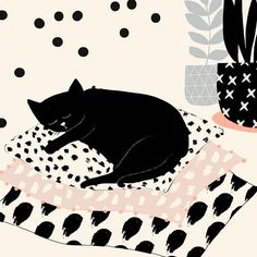 Cat illustration by Susan Driscoll via Art And Illustration, Pattern Illustration, Black Cat Art, Black Cats, Black Kitty, Art Watercolor, Cat Drawing, Cats And Kittens, Ragdoll Kittens