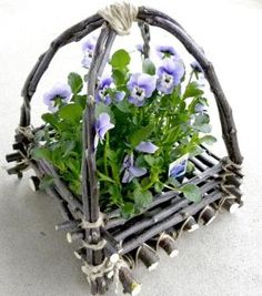 DIY Apple Twig Basket (Use Green Pliable Twigs or Branches) how to make a twig basket LINKS TO Natural Designs tutorials **** Apple trees need trimmed every spring. A resourceful way to use the pruned branches is to make a twig basket. The sucker twigs ar Twig Crafts, Nature Crafts, Garden Crafts, Garden Projects, Garden Art, Wood Crafts, Garden Design, Ikebana, Willow Furniture