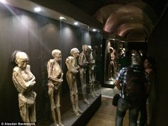Popular: tourists a week pay each to gape at the mummified corpses on display at the Guanajuato Mummy Museum Mummy Museum, Visit Usa, Museum Displays, Memento Mori, Macabre, First World, Weird, Mexico, Statue