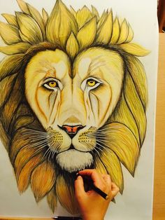 lion drawing, colorpencil on paper