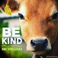 WEBSTA @ lc4a - Be kind. Be #vegan.