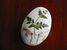pintar piedras - Página 4 - Foro de InfoJardín