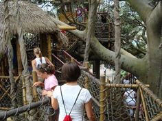Opened: 1971  Walk through time: 13 minutes  Definitley see The Swiss Family Treehouse once it is pretty spectacular!