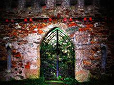 Ireland Dublin Door.  Landscape Photography Forest Green Brick Picture Home Decor