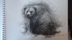 grizzly bear drawing step by step - Google Search