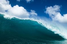 A place few surfers would actually want to be. Bethany Hamilton, The Search, Call To Action, Surfers, Rip Curl, Water Sports, Deep Blue, Shark, Waves