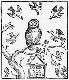 The Owle , by Michael Drayton; Woodcut on title-page of the owl,. Title Page, Bird, Prints, Owls, Image, Birds, Owl, Printed, Art Print