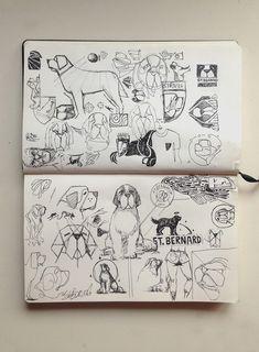 St.bernard sketches