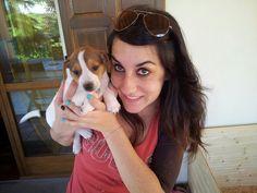 Love Quentin @jackrussel @puppy @animal