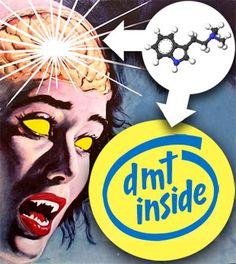 La glándula pineal y la dimetiltriptamina « Astropuerto
