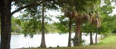 Beautiful scene at Orlando's Blanchard Park