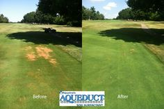 These pics come to us from a course in Ohio. Aqueduct all but eliminated Localized Dry Spots in under two weeks! Plant Health, Ohio, Golf Courses, Country Roads, Columbus Ohio