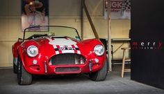 Merry Christmas... and a 1963 AC Cobra Le Mans Competition Roadster - 2015 Goodwood Revival | by Motorsport in Pictures