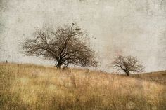 ... and then again by jamie heiden, via Flickr