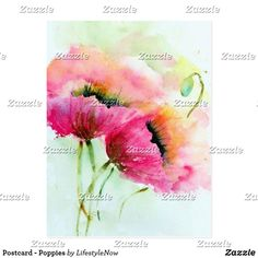 Postcard - Poppies Watercolor Jellyfish, Watercolor Tattoo, Easy Paintings, Postcard Size, Poppies, Drawings, Prints, Painted Flowers, Watercolors