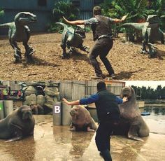 Zookeepers are hilariously recreating Chris Pratt's Jurassic World pose