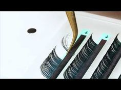 15d Mega Volume Fan step by step - Mega Volume Lash Extensions tutorial - YouTube
