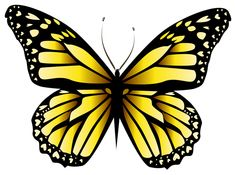 Yellow Butterfly PNG Clipar Image