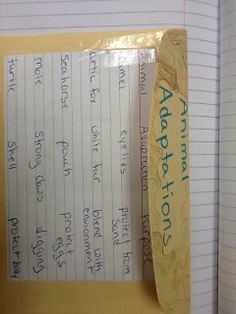 Science Interactive Notebooks: March 2013--animal adaptations