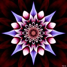 A CHAMA VIOLETA - OS MESTRES ASCENCIONADOS: Uma Mandala para cada Signo!