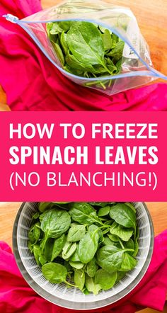 How To Freeze Spinach (The EASY Way!) -- yes you can freeze fresh spinach leaves with NO blanching and NO mess! Freezing spinach is an excellent way to minimize your produce waste. Great for smoothies soups sauces casseroles pasta dishes and much more. Fresh Spinach Recipes, Veggie Recipes, Healthy Recipes, Easy Recipes, Salad Recipes, Paleo Ideas, Spinach Pasta, Blender Recipes, Kitchen