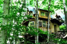 green-mountain-treehouse-8