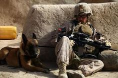 Cpl. Derrick Magee, 21, dog handler with 2nd Battalion, 4th Marines, from Vineland, N.J. and his dog, TTroy, rest during a patrol break. TTroy is part of the Lackland Air Force Base puppy program and is identified by a double letter first name. This signifies that his parents were both military working dogs. He is trained to find military grade and home made explosives. by Staff Sgt. Robert Storm