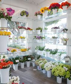 20 Beautiful Flower Truck Ideas For More Exciting and Profitable Sales Gift Shop Interiors, Flower Shop Interiors, Flower Shop Decor, Flower Shop Design, Flower Truck, Flower Bar, Applis Photo, Flower Boutique, Flower Market