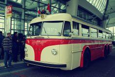 tatra - bus