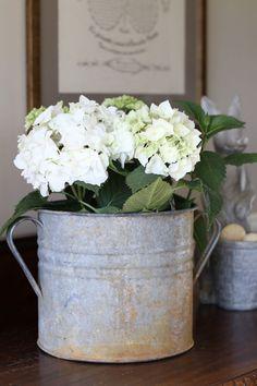 hydrangeas-vintage-french-bucket