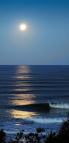 Many lovely, inspiring, breathtaking pictures have I seen, and I admire them all...but just this, the moon over a South Coast sea, lifts my spirits and delights my heart...I know its out there and I will wait for it.