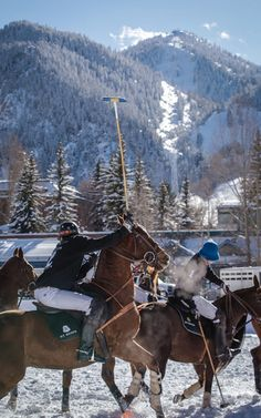 Snow Polo Experience With Nacho Figueras by THE ST. REGIS ASPEN RESORT Now Available on Moda Operandi