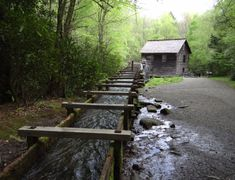 6. Mingus Creek Trail, Cherokee