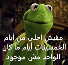 Image in Kermit 🐸 collection by Joury on We Heart It Funny Photo Memes, Funny Picture Jokes, Jokes Pics, Funny Reaction Pictures, Memes Funny Faces, Crazy Funny Memes, Jokes Quotes, Funny Pictures, Funny Cartoon Quotes