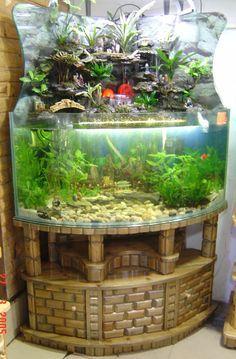 Beautiful Freshwater Aquarium With A Waterfall!