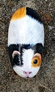 Guinea-pig-hand-painted-rock-pebble-stone-no-indoor-cage-hutch-run-or-food