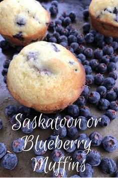 Saskatoon or Blueberry Muffins - Fresh berries are in season so make these easy and delectable Saskatoon or Blueberry muffins. It's a great way to use fresh berries! Muffin Recipes, Brunch Recipes, Breakfast Recipes, Dessert Recipes, Brunch Foods, Brunch Ideas, Dessert Ideas, Summer Recipes, Fall Recipes