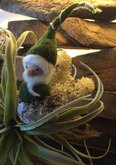 kleiner gefilzter Wichtelmann Gnom Zwerg sitzt in einer Schale im Moos Bear, Animals, Dwarf, Woodland Forest, Felting, Handarbeit, Animales, Animaux, Bears