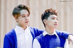 セブチ 仲良しツーショット画像 EXO&セブチ、KPOPをやんわりと語る韓国大好きゆみんずのブログ
