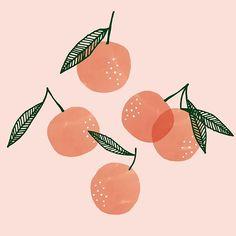 Clementines Art Print by finandpoppy Art And Illustration, Illustrations, Painting Inspiration, Art Inspo, Clementine Art, E21, Guache, Fruit Art, Grafik Design