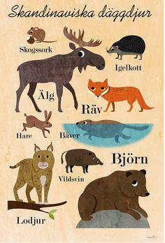 Nordic Thoughts: Ingela Arrhenius' Scandinavian posters